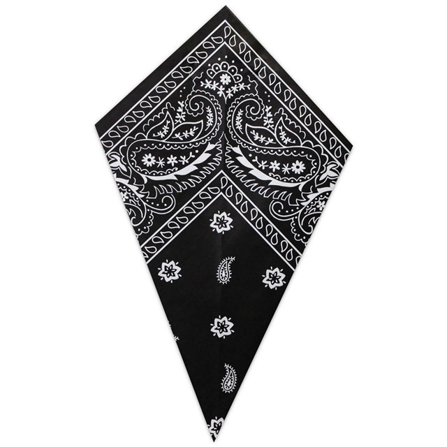 Black Paisley Bandana - Paper Cone