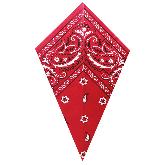 Red Paisley Bandana - Paper Cone