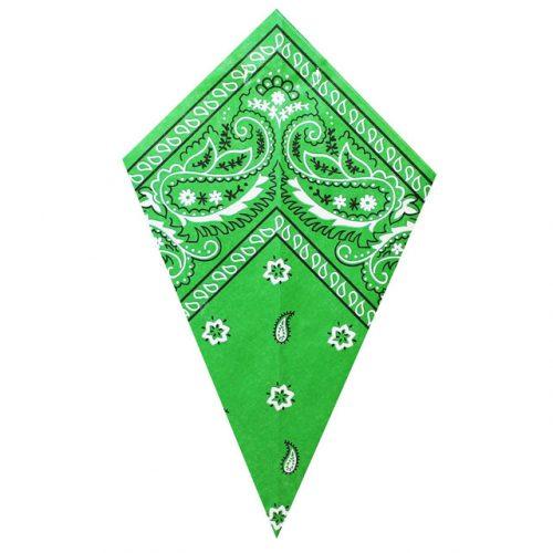 Green Paisley Bandana - Paper Cone
