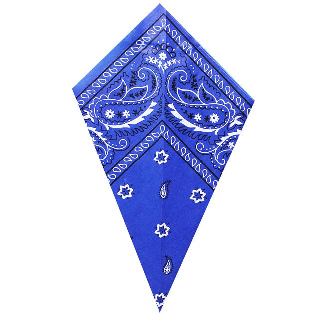 Blue Paisley Bandana - Paper Cone
